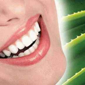 алоэ и зубы, алоэ и десна, зубная паста алоэ