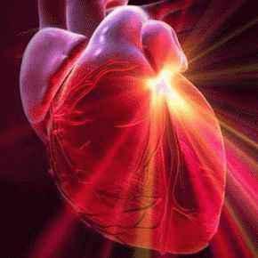 сердце и алоэ, сердечные ритмы, тромбы, биоритм, сердце