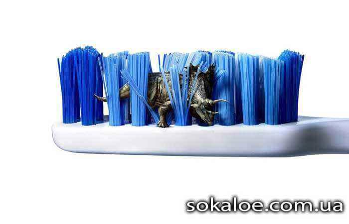 dezinfekcija-zubnoj-shhetki-mikroby-na-zubnoj-shhetke-kak-uhazhivat-za-zubami