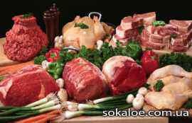 vse-o-vegetarianstve-pljusy-i-minusy-vegetarianstva