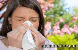 vse-pro-allergiju