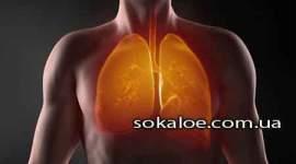 tuberkulez-kashel
