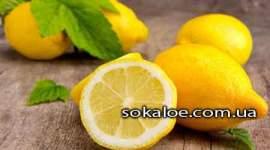 poleznye-svojstva-limona-vred-limona