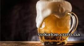 mozhno-li-pivo-pri-pohudenii-polza-i-vred-piva