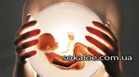 surrogatnoe-materinstvo-jeko