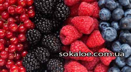 antioksidanty-v-produktah-vitaminy