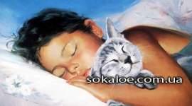 Kak-spat-chtoby-vysypatsja