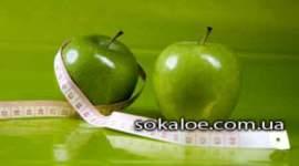 jablochnaja-dieta