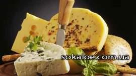 Polza-syra