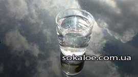 Kak-ostavatsja-gidratirovannym-krome-pitevoj-vody