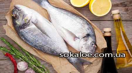 Kak-bystree-zaberemenet'-upotreblenie-ryby