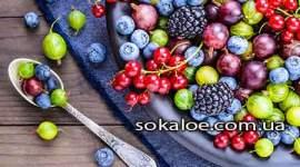 Produkty-s-vysokim-soderzhaniem-antioksidantov
