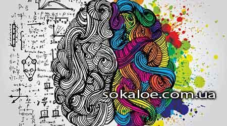 Zdorovyj-mozg-mnogogrannyj-podhod