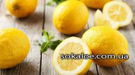 Razvenchivaem-mify-Samye-kislye-fakty-o-limone
